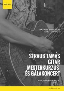 Straub T. Git. mesterk. 1